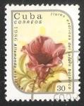 Sellos de America - Cuba -  Allamanda violacea