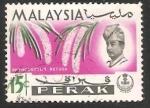 Sellos de Asia - Malasia -  Rhynchostylis retusa