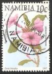 Sellos del Mundo : Africa : Namibia : Adenium boehmianum