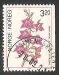 Sellos de Europa - Noruega -  Orquídea terrestre