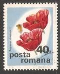 Stamps Romania -  Amapola