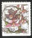 Stamps Sweden -  Orquidea