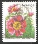 Sellos de Europa - Suecia -  Peonía doble Dill.