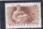 Sellos de Asia - Hungría -  AGRICULTOR