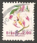 Sellos del Mundo : America : Brasil :  Chorisia crispiflora