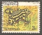Sellos de Oceania - Australia -  corroboree frog-Rana Corroboree