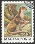 Stamps Hungary -  Nutria