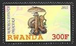 Sellos de Africa - Rwanda -  Macrolepiota procera
