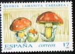 Sellos de Europa - España -  3245 -Micología. Amanita caesarfa.