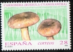 Stamps Spain -  3246 - Micología. Russula cyanoxantha.