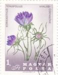 Stamps Hungary -  F L O R E S