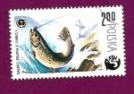 Stamps Poland -  Peces - Trucha marrón - Asociación Polaca de Pesca PZW
