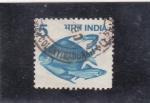 Sellos de Asia - India -  P E Z
