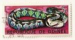 Stamps Africa - Guinea -  Instituto de biologia aplicada. Vibora de Gabon.