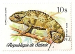 Sellos del Mundo : Africa : Guinea : Reptiles y serpientes. Camaleon.