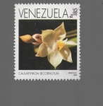 Sellos de America - Venezuela -  FLOR