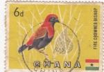 Stamps Ghana -  A V E
