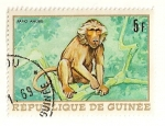 Stamps Africa - Guinea -  Animales africanos. Babuino.