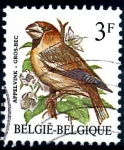 Stamps : Europe : Belgium :  BELGICA_SCOTT 1219.01 GROS BEC. $0,2
