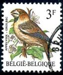 Stamps : Europe : Belgium :  BELGICA_SCOTT 1219.02 GROS BEC. $0,2