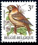 Stamps : Europe : Belgium :  BELGICA_SCOTT 1219.03 GROS BEC. $0,2
