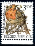 Stamps : Europe : Belgium :  BELGICA_SCOTT 1221.04 CUELLO ROJO. $0,2