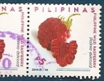 Stamps : Asia : Philippines :  Frambuesa