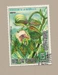 Stamps Equatorial Guinea -  Protección de la Naturaleza - Flora de America - Orquidea Catasetum