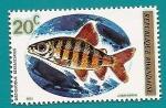 Stamps Africa - Rwanda -  Peces - Distichodus de seis bandas