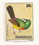 Stamps Africa - Rwanda -  Aves de la selva Nyungwe. Nectarina regia.