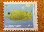 Stamps : Oceania : Australia :  Pez Coral Rabbitfish