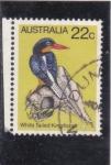 Sellos de Oceania - Australia -  A V E