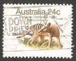 Sellos de Oceania - Australia -  Thylacine (Tasmanian Tiger)