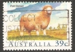 Sellos de Oceania - Australia -  Poll Dorset