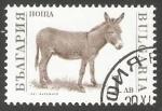 Stamps Bulgaria -  Donkey (Equus asinus asinus)