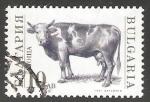 Sellos del Mundo : Europa : Bulgaria : Bull (Bos primigenius taurus)