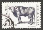 Sellos de Europa - Bulgaria -  Bull (Bos primigenius taurus)