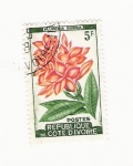 Stamps Africa - Djibouti -  PLUMERIA RUDRA