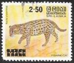 Stamps Sri Lanka -  Felis viverrina