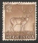 Sellos de Asia - India -  Chital