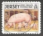 Stamps United Kingdom -  Domestic Pig