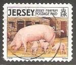 Sellos del Mundo : Europa : Reino_Unido : Domestic Pig