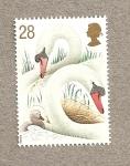 Stamps United Kingdom -  Cisnes