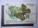 Stamps Spain -  Ed:3694 - Museo Nacional de Ciencias Naturales.
