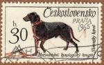 Sellos de Europa - Checoslovaquia -  PERROS-CONGRESO CINOLÓGICO. PRAGA 1965