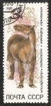 Stamps Russia -  Chalicotherium