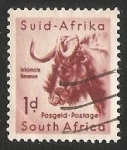 Stamps of the world : South Africa :  Black Wildebeest