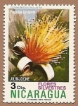 Stamps America - Nicaragua -  Flora - flores silvestres - Jilinjoche