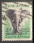 Sellos de Africa - Sudáfrica -  Elefante