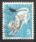 Sellos de Europa - Suiza -  Stoat (Mustela erminea)